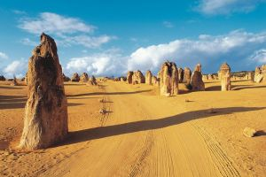 Pinnacles Desert Koalas and Sandboarding 4WD Day Tour from Perth - Surfers Paradise Gold Coast