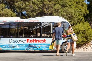 Rottnest Island Tour from Perth or Fremantle including Bus Tour - Surfers Paradise Gold Coast